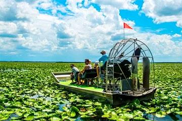 Lake Tohopekaliga Airboat Experience